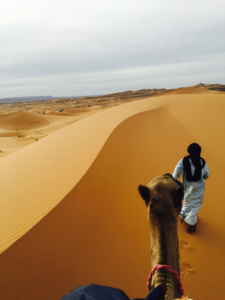 sand-line