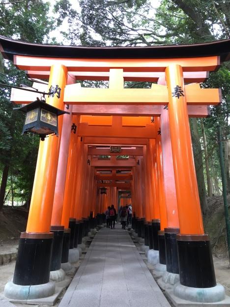 Fushimi-Inari Tori Gates